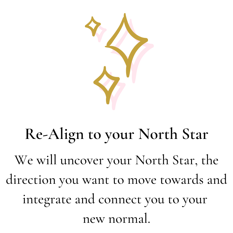 Re-Align to your North Star